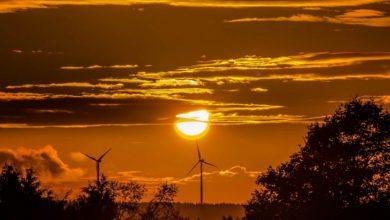 Photo of Meteorologii atenționează: 2020 ar putea fi cel mai călduros an înregistrat vreodată