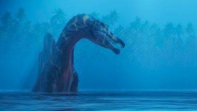 Photo of Descoperire impresionantă: Spinosaurus, primul dinozaur care putea înota