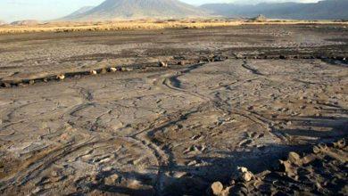 Photo of Cum arată, de fapt, una din primele amprente lăsate de oameni acum peste 10.000 de ani