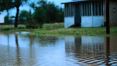 Photo of Cod roșu de precipitații, ploi devastatoare. Sute de oameni au avut nevoie de ajutor, drumuri închise din cauza aluviunilor