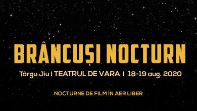 Photo of Brâncuși Nocturn: filme de(spre) artă în aer liber, ediția II