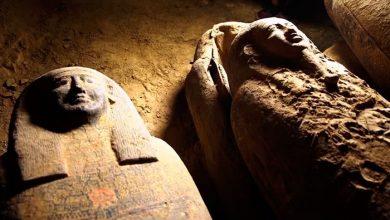 Photo of Arheologii au descoperit 13 sicrie misterioase într-o fântână din Egipt. Ce se află în ele