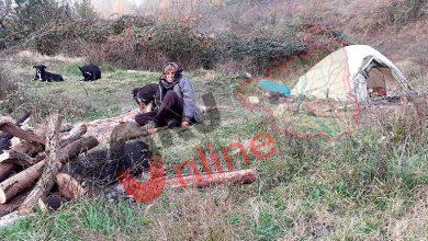 Photo of CUTREMURĂTOR! Bătrână ABANDONATĂ sub cerul liber, într-un mărăciniș, la marginea localității Sâmbotin!