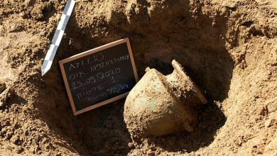 Photo of 8 morminte antice, descoperite pe un teren privat din Peloponez