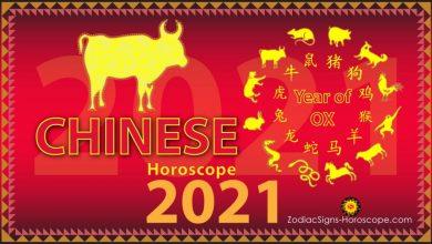 Photo of A început noul an chinezesc 2021: Anul Bivolului alb de metal