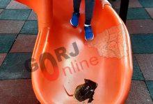 Photo of Locurile de joacă din Târgu Jiu, vandalizate!